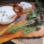 fromages de montagne